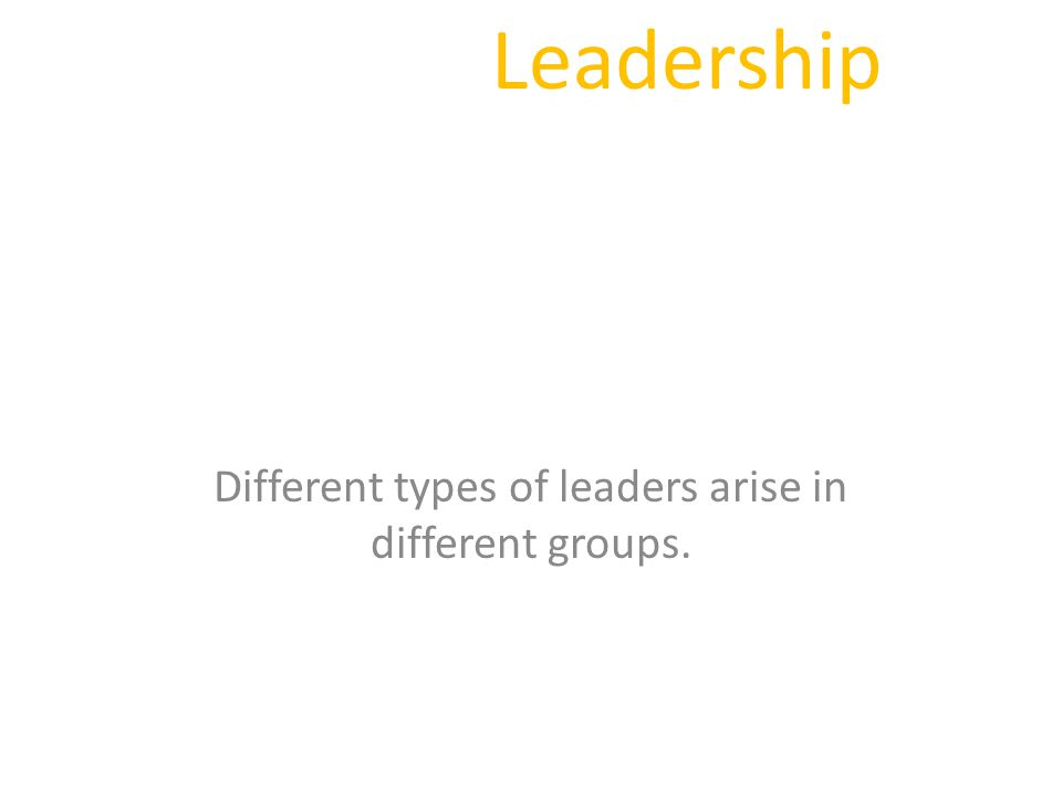 Leadership Different types of leaders arise in different groups.