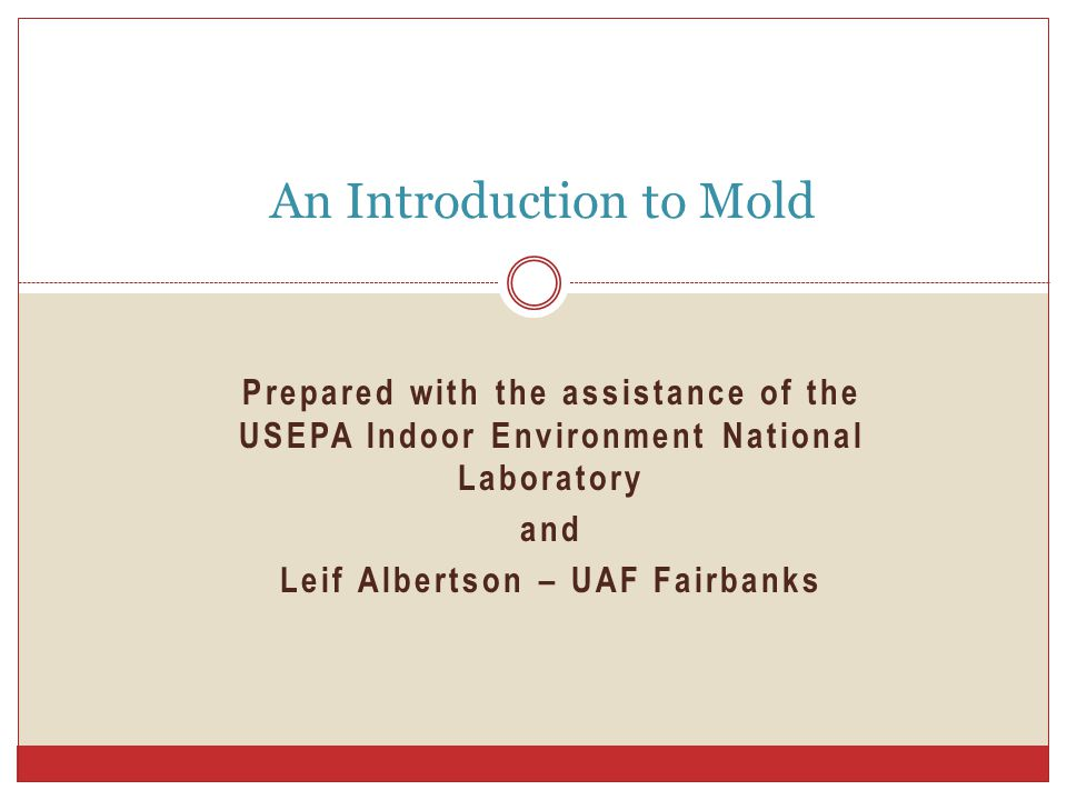 Prepared with the assistance of the USEPA Indoor Environment National Laboratory and Leif Albertson – UAF Fairbanks An Introduction to Mold