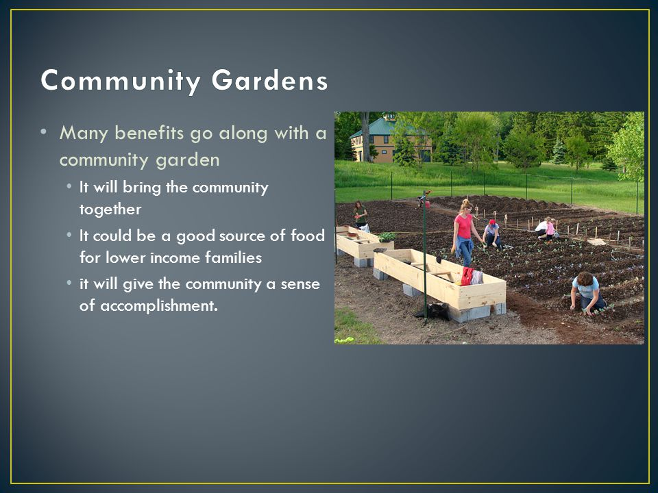 Many benefits go along with a community garden It will bring the community together It could be a good source of food for lower income families it will give the community a sense of accomplishment.