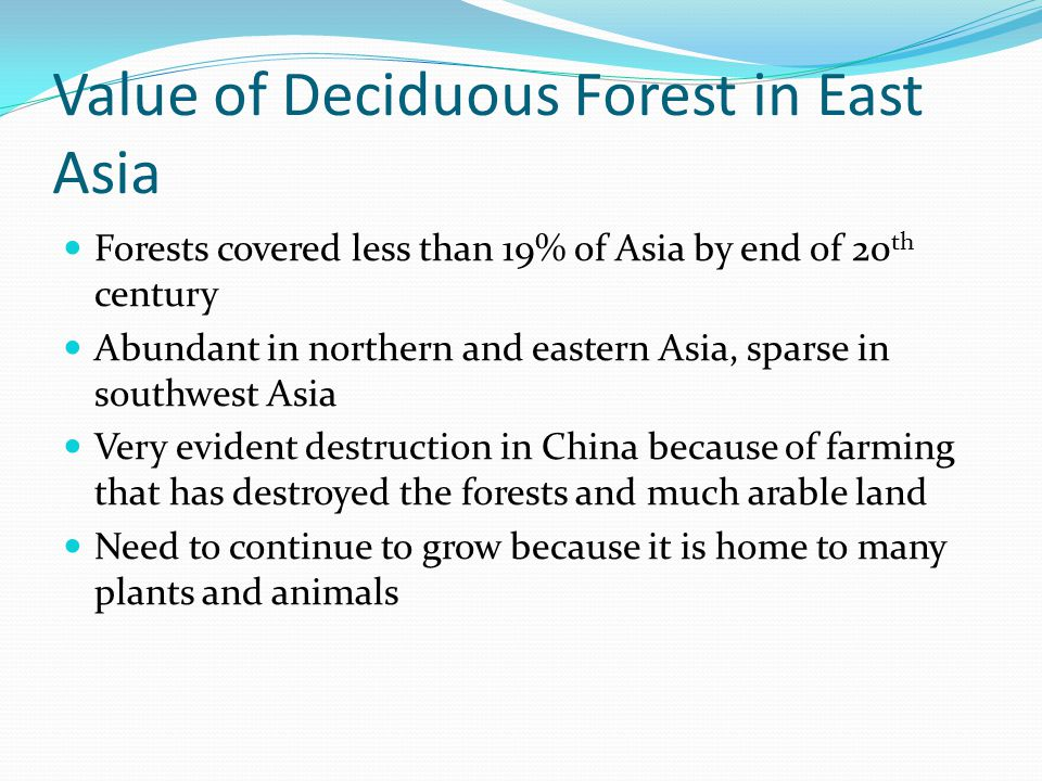 Value of Deciduous Forest in East Asia Forests covered less than 19% of Asia by end of 20 th century Abundant in northern and eastern Asia, sparse in southwest Asia Very evident destruction in China because of farming that has destroyed the forests and much arable land Need to continue to grow because it is home to many plants and animals