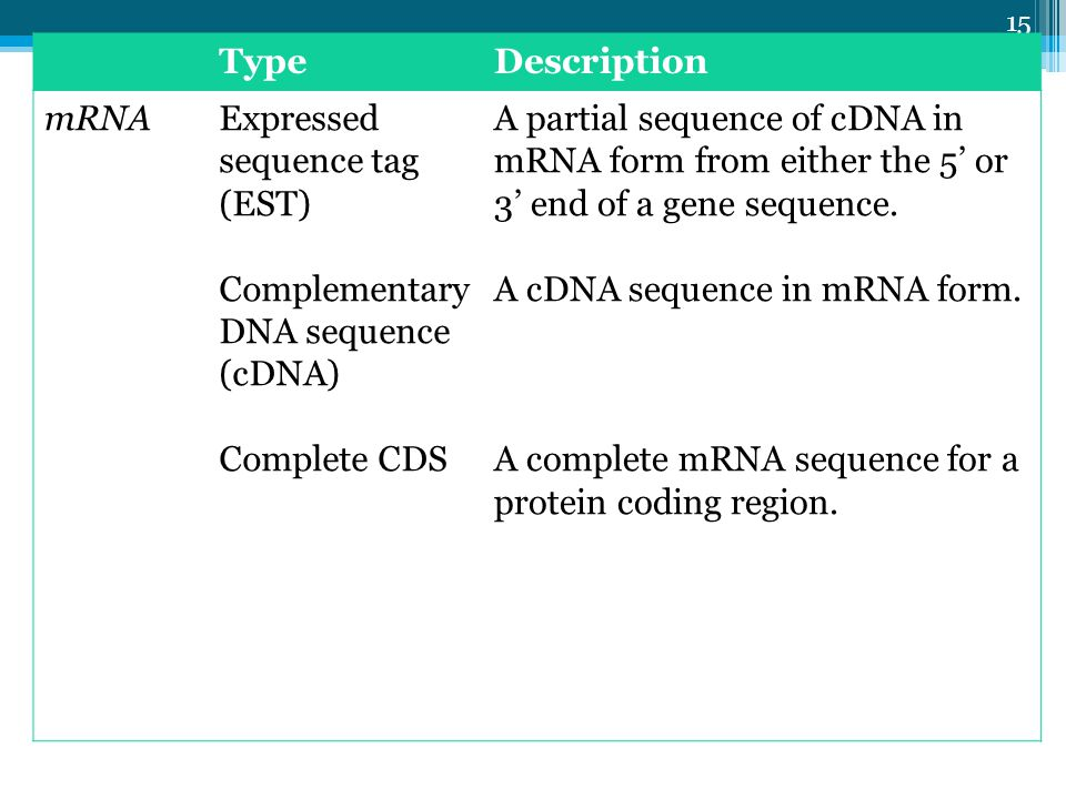 Lec-3 15 TypeDescription mRNAExpressed sequence tag (EST) Complementary DNA sequence (cDNA) Complete CDS A partial sequence of cDNA in mRNA form from either the 5 or 3 end of a gene sequence.