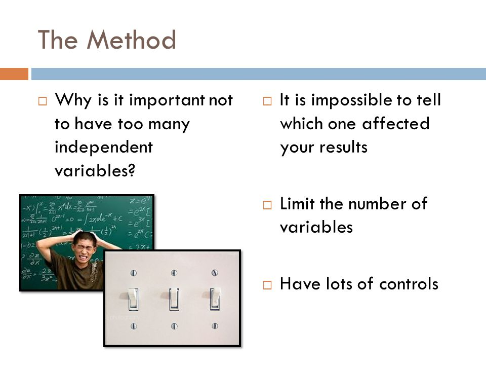 Dimensional Analysis Jerseylicious How much is a centimeter?