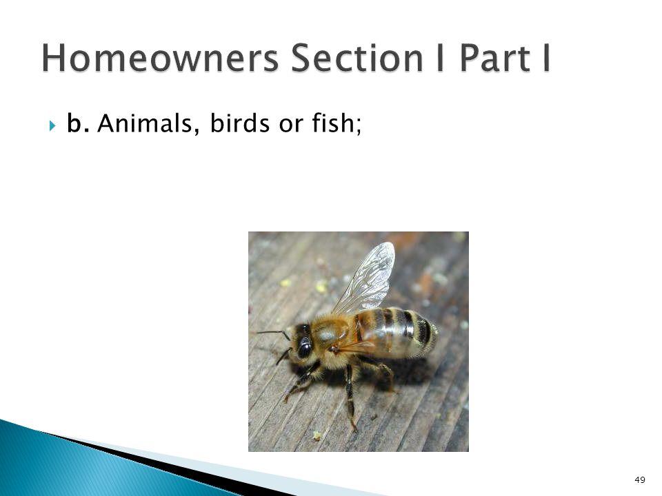 b. Animals, birds or fish; 49