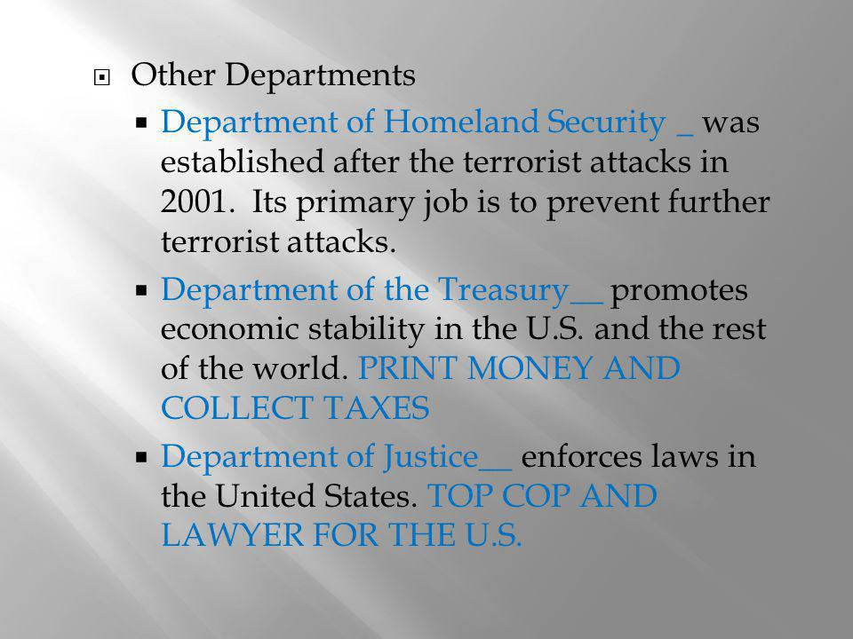 Other Departments Department of Homeland Security _ was established after the terrorist attacks in 2001. Its primary job is to prevent further terrori