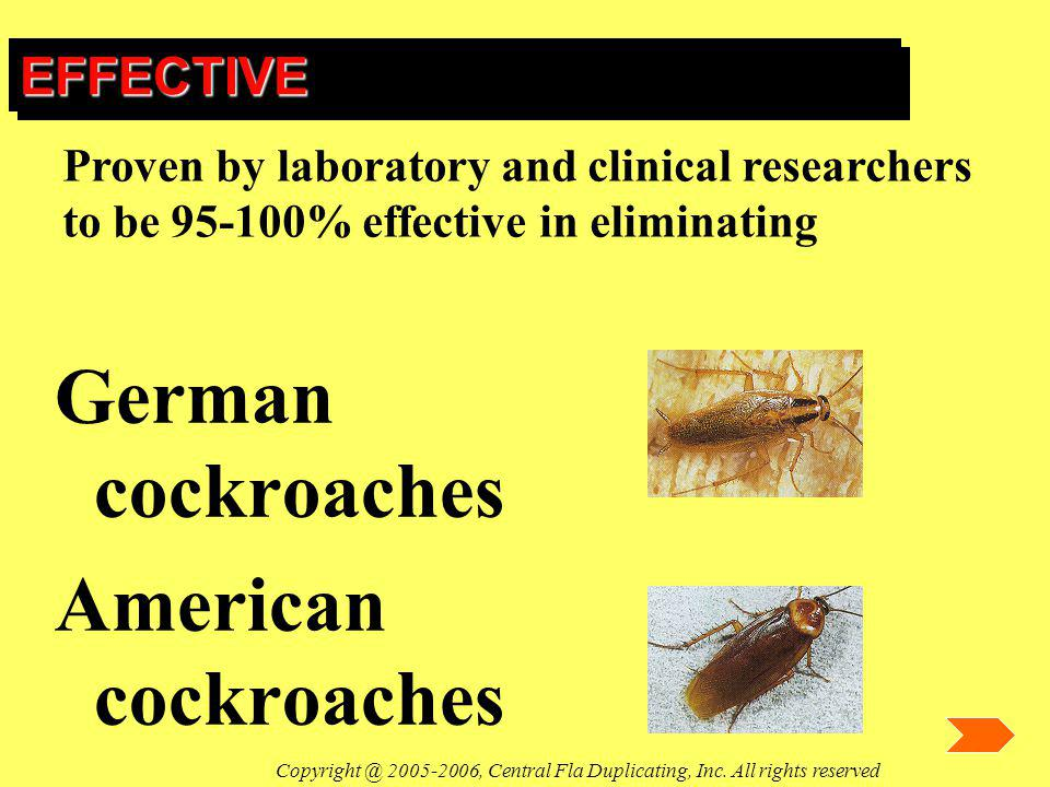 EFFECTIVEEFFECTIVE German cockroaches American cockroaches Proven by laboratory and clinical researchers to be 95-100% effective in eliminating Copyri