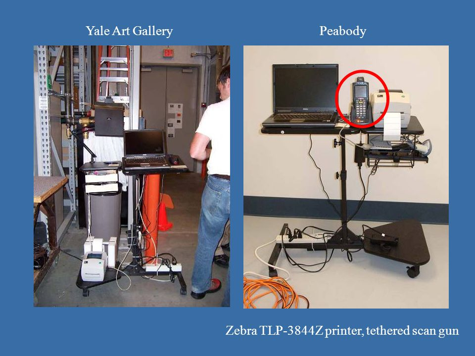 Yale Art GalleryPeabody Zebra TLP-3844Z printer, tethered scan gun