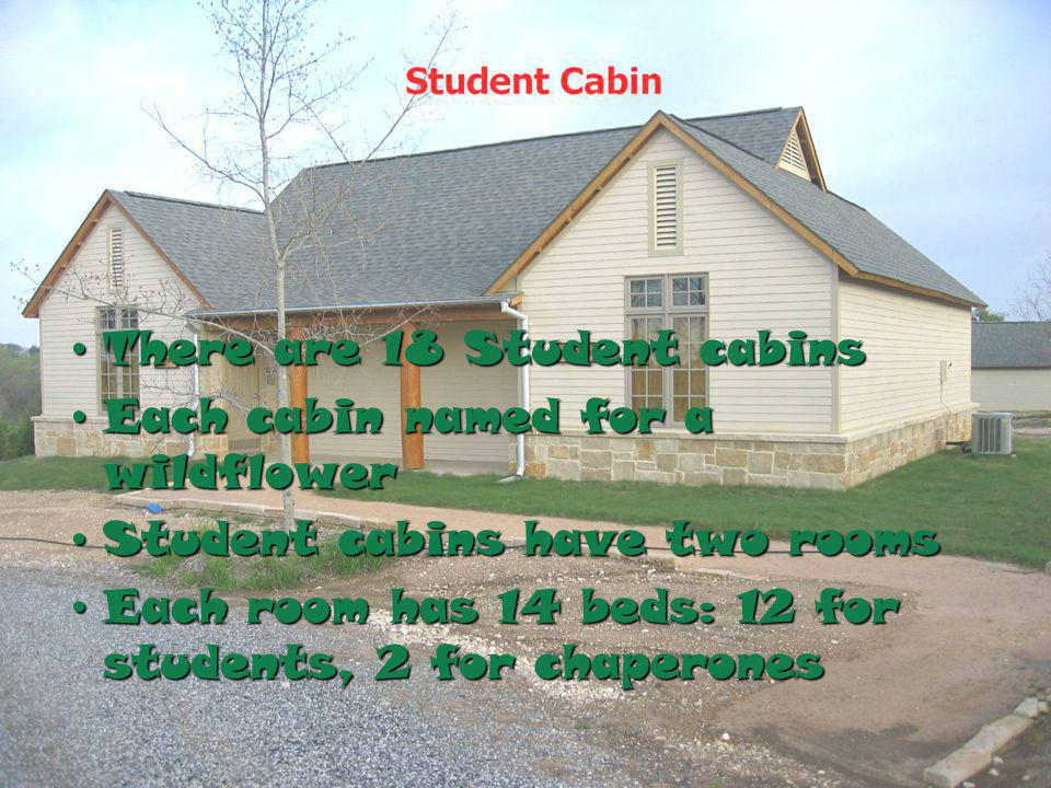 There are 18 Student cabinsThere are 18 Student cabins Each cabin named for a wildflowerEach cabin named for a wildflower Student cabins have two roomsStudent cabins have two rooms Each room has 14 beds: 12 for students, 2 for chaperonesEach room has 14 beds: 12 for students, 2 for chaperones