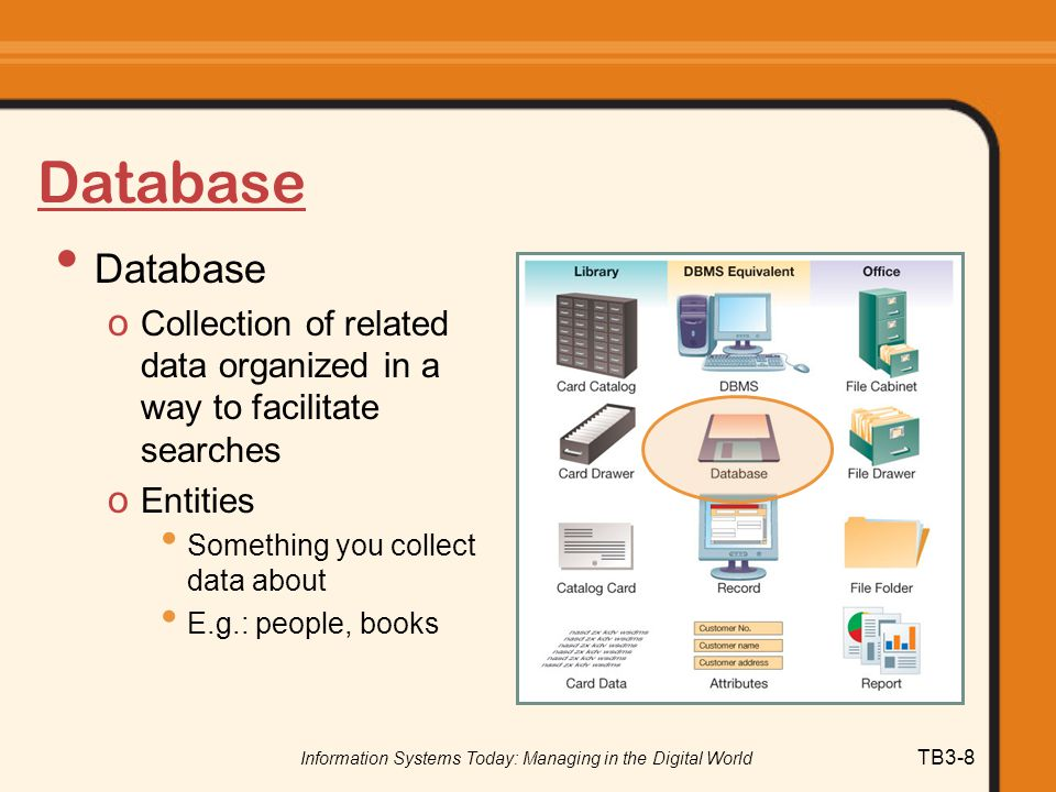 Information Systems Today: Managing in the Digital World TB3-8 Database o Collection of related data organized in a way to facilitate searches o Entit