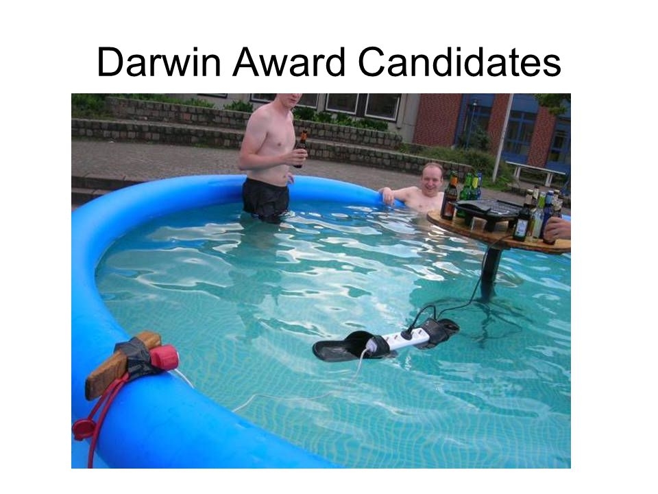Darwin Award Candidates