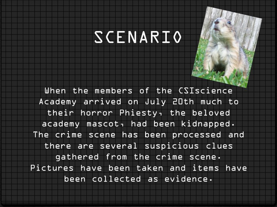 SCENARIO When the members of the CSIscience Academy arrived on July 20th much to their horror Phiesty, the beloved academy mascot, had been kidnapped.