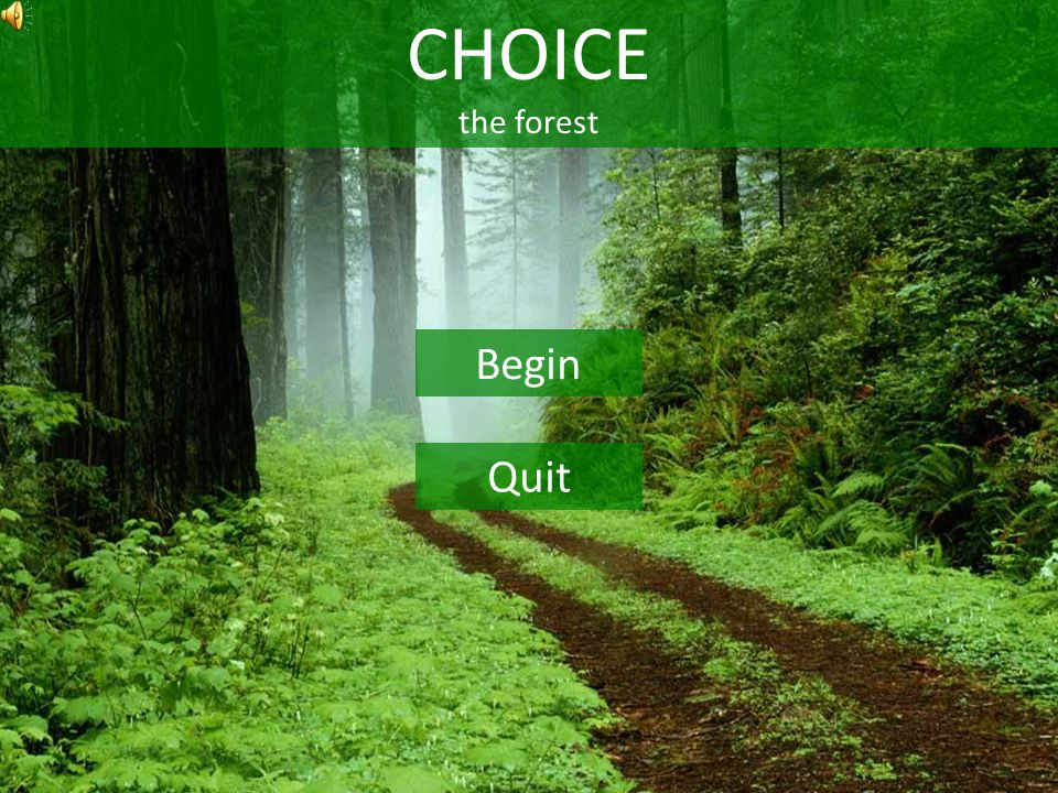 CHOICE the forest Begin Quit