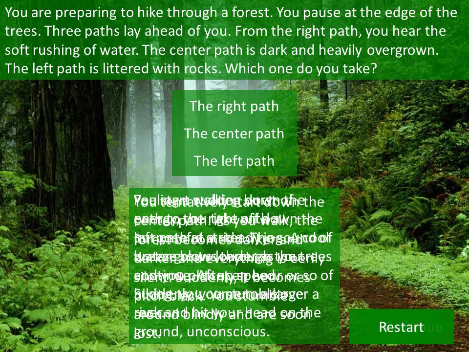 You are preparing to hike through a forest. You pause at the edge of the trees.