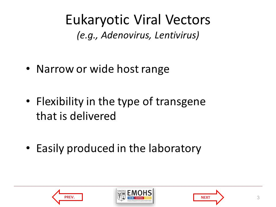 Eukaryotic Viral Vectors (e.g., Adenovirus, Lentivirus) Narrow or wide host range Flexibility in the type of transgene that is delivered Easily produced in the laboratory 3