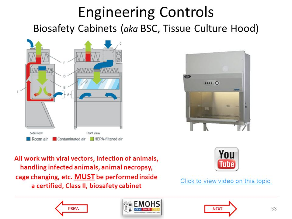 Engineering Controls Biosafety Cabinets ( aka BSC, Tissue Culture Hood) 33 Click to view video on this topic All work with viral vectors, infection of animals, handling infected animals, animal necropsy, cage changing, etc.