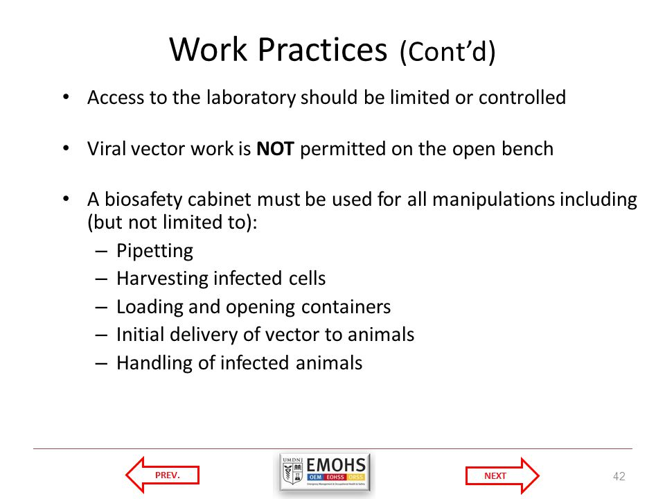 Work Practices (Contd) Access to the laboratory should be limited or controlled Viral vector work is NOT permitted on the open bench A biosafety cabinet must be used for all manipulations including (but not limited to): – Pipetting – Harvesting infected cells – Loading and opening containers – Initial delivery of vector to animals – Handling of infected animals 42