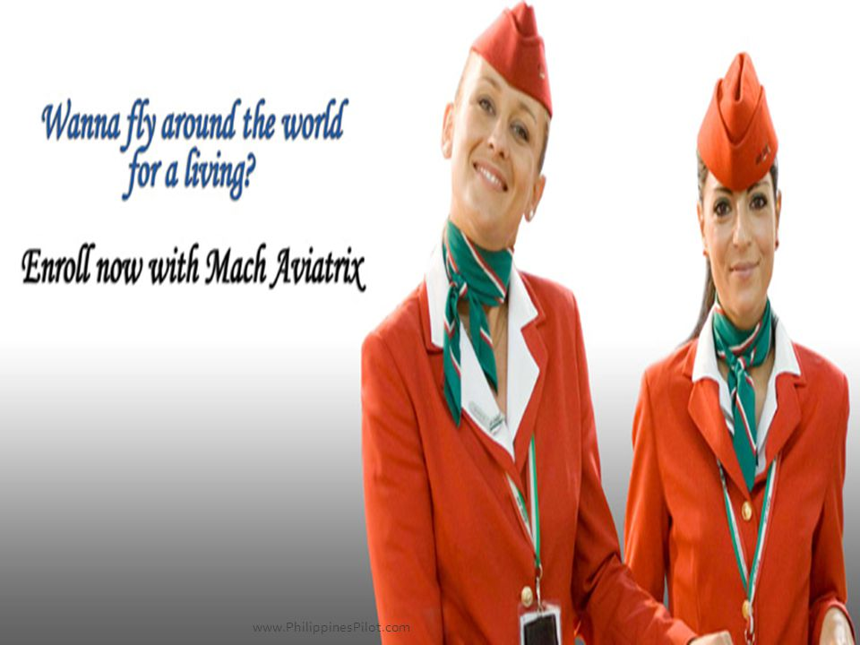 An Aviation SEO Project promoted by AeroSoft Corp.