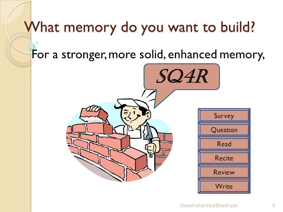GayleFisherYourBrainFacts9 What memory do you want to build.