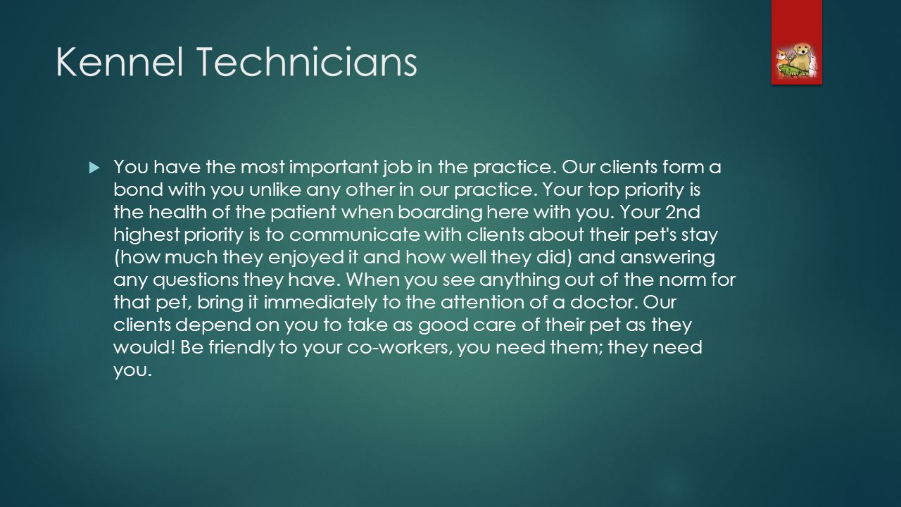 Kennel Technicians You have the most important job in the practice.