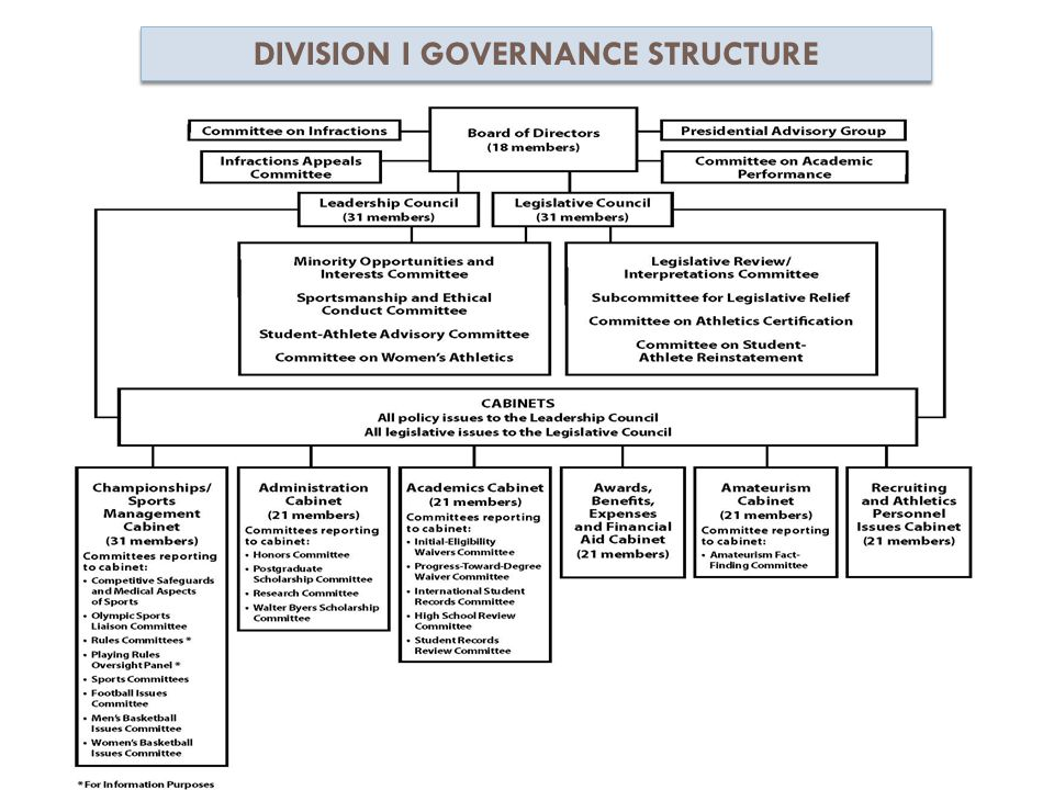 DIVISION I GOVERNANCE STRUCTURE
