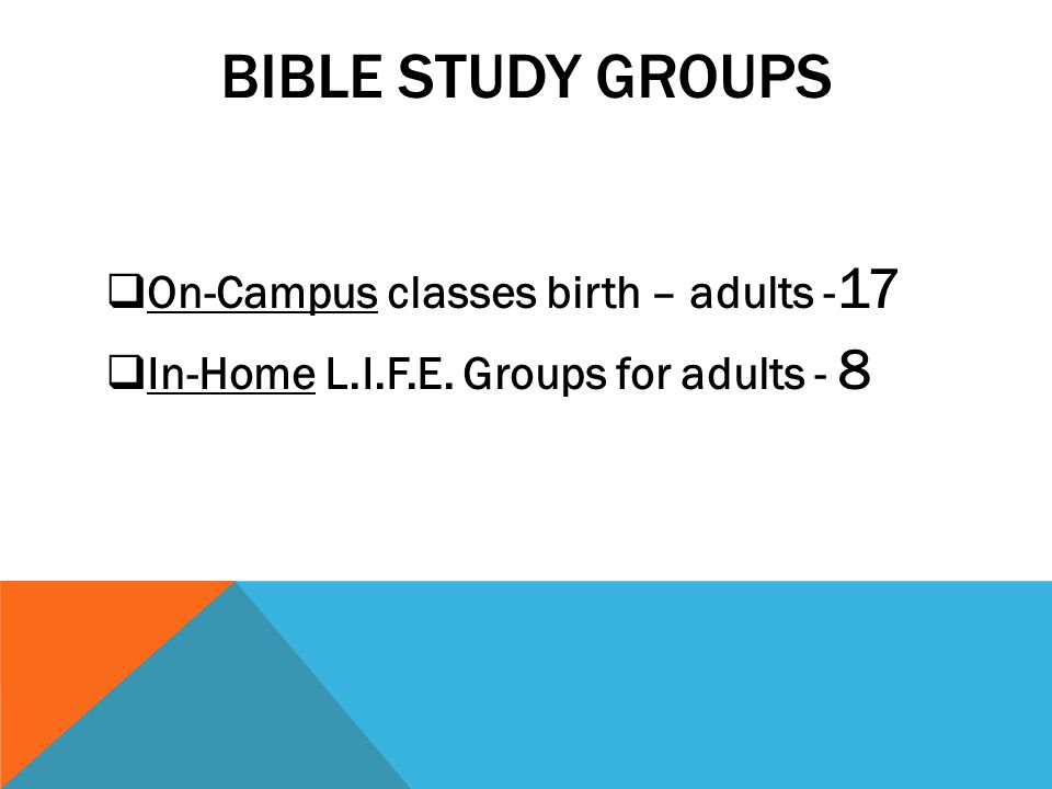 BIBLE STUDY GROUPS On-Campus classes birth – adults - 17 In-Home L.I.F.E. Groups for adults - 8