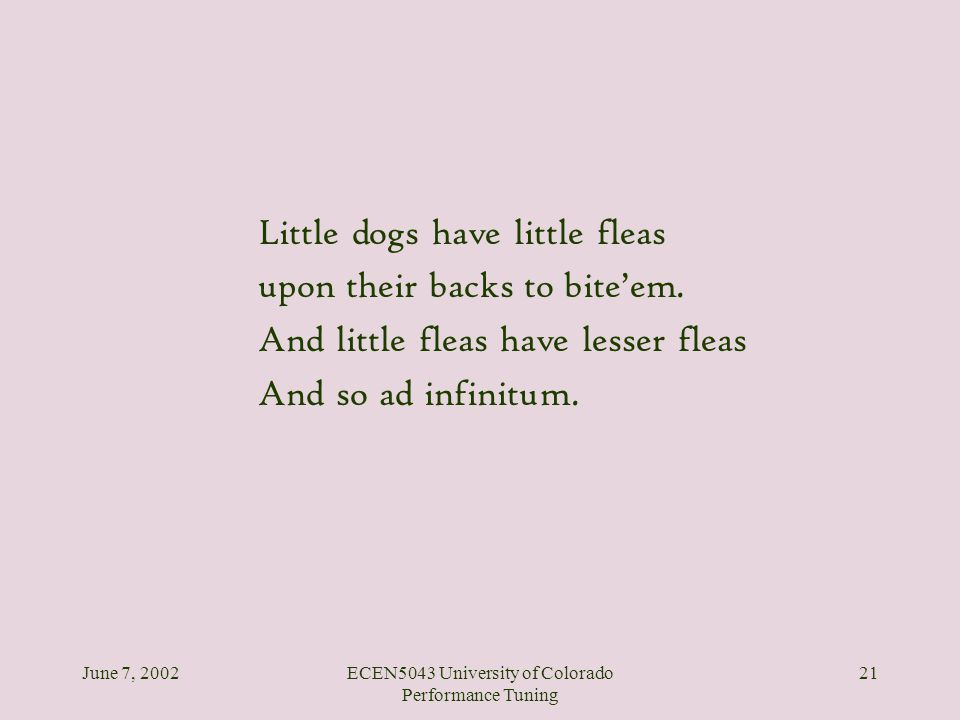 June 7, 2002ECEN5043 University of Colorado Performance Tuning 21 Little dogs have little fleas upon their backs to biteem. And little fleas have less