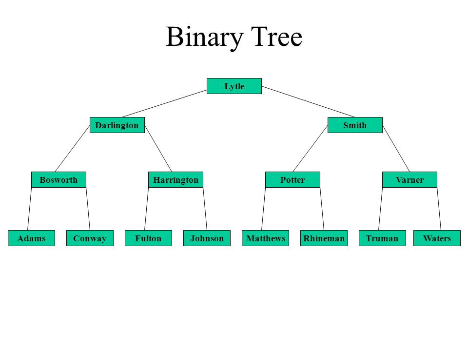 Binary Tree Conway Harrington Lytle Johnson Bosworth FultonAdamsTrumanWatersRhinemanMatthews SmithDarlington PotterVarner
