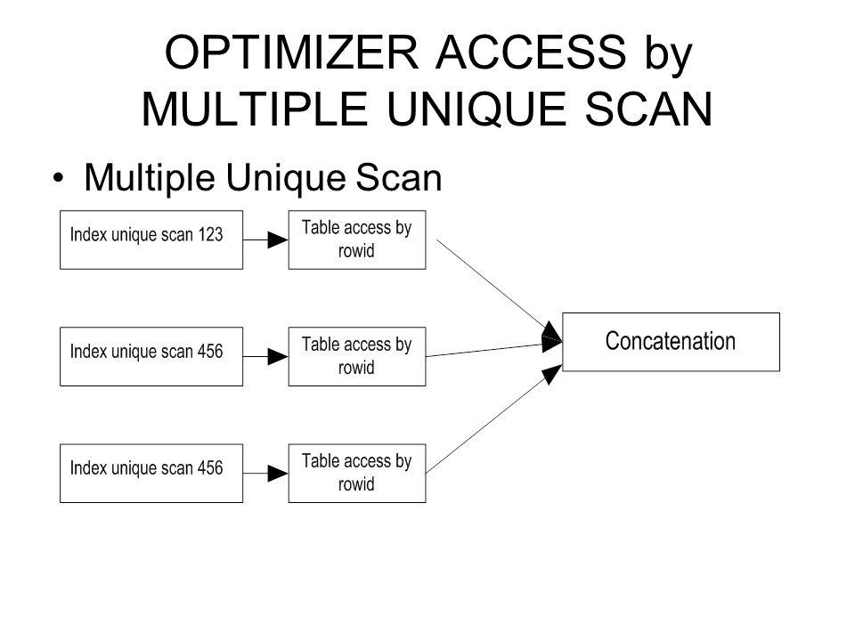 OPTIMIZER ACCESS by MULTIPLE UNIQUE SCAN Multiple Unique Scan