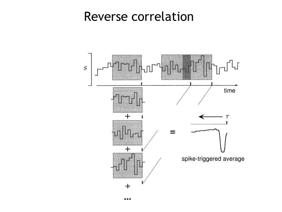 Reverse correlation