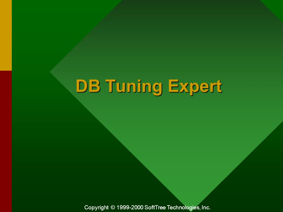 Copyright © 1999-2000 SoftTree Technologies, Inc. DB Tuning Expert