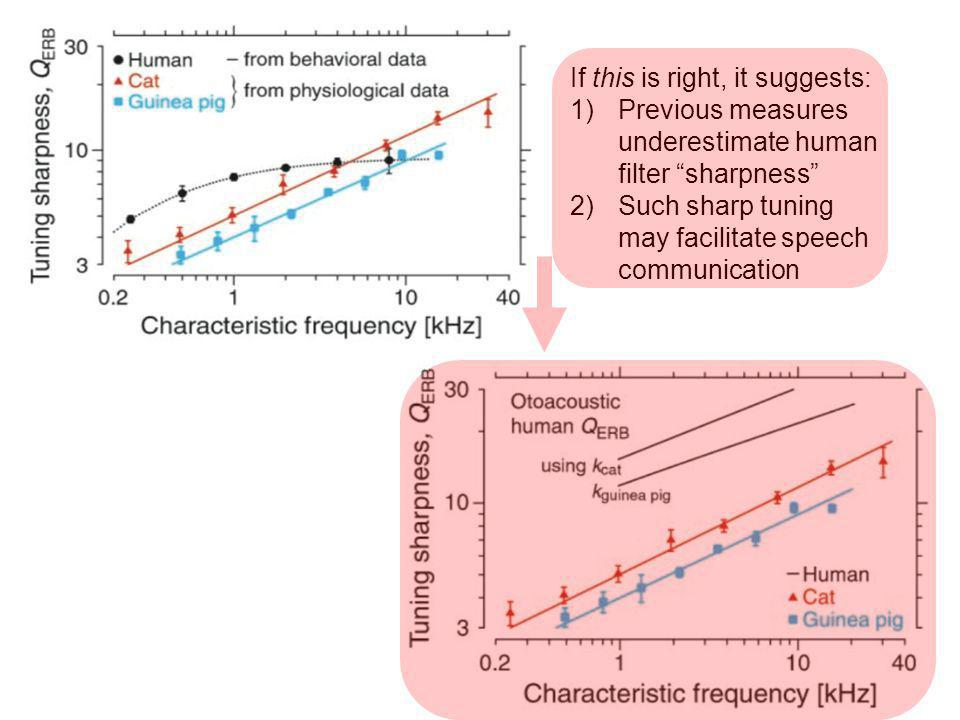 If this is right, it suggests: 1)Previous measures underestimate human filter sharpness 2)Such sharp tuning may facilitate speech communication