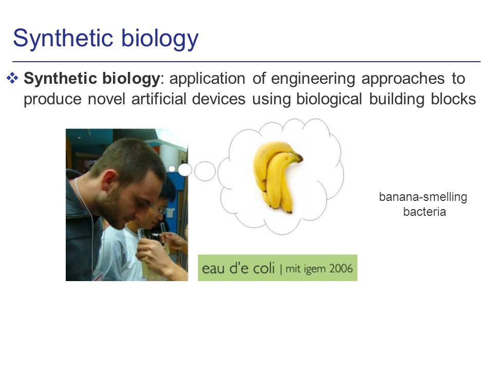 Synthetic biology vSynthetic biology: application of engineering approaches to produce novel artificial devices using biological building blocks banana-smelling bacteria