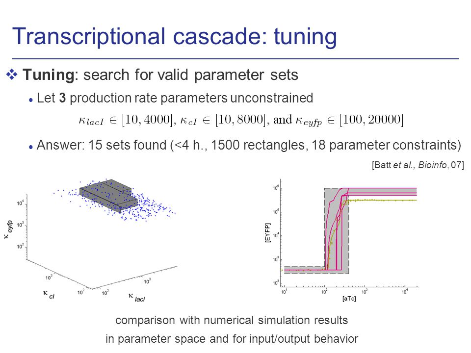Transcriptional cascade: tuning vTuning: search for valid parameter sets l Let 3 production rate parameters unconstrained l Answer: 15 sets found (<4 h., 1500 rectangles, 18 parameter constraints) comparison with numerical simulation results in parameter space and for input/output behavior [Batt et al., Bioinfo, 07]