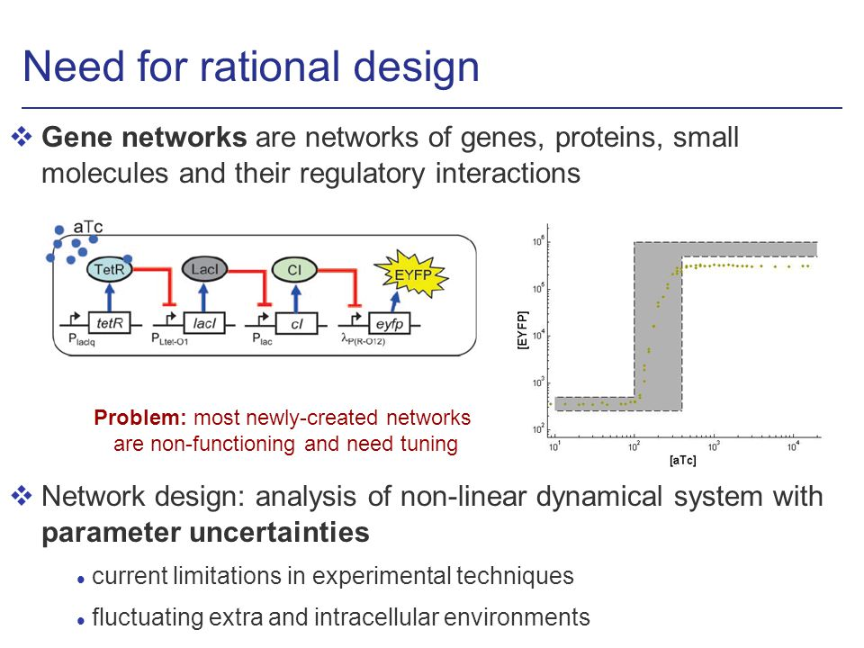 Need for rational design vGene networks are networks of genes, proteins, small molecules and their regulatory interactions vNetwork design: analysis of non-linear dynamical system with parameter uncertainties l current limitations in experimental techniques l fluctuating extra and intracellular environments Problem: most newly-created networks are non-functioning and need tuning