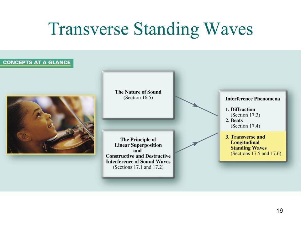 19 Transverse Standing Waves