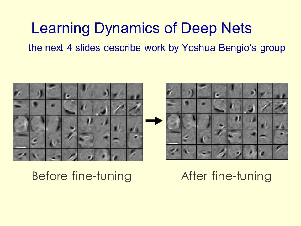 Learning Dynamics of Deep Nets the next 4 slides describe work by Yoshua Bengios group Before fine-tuningAfter fine-tuning
