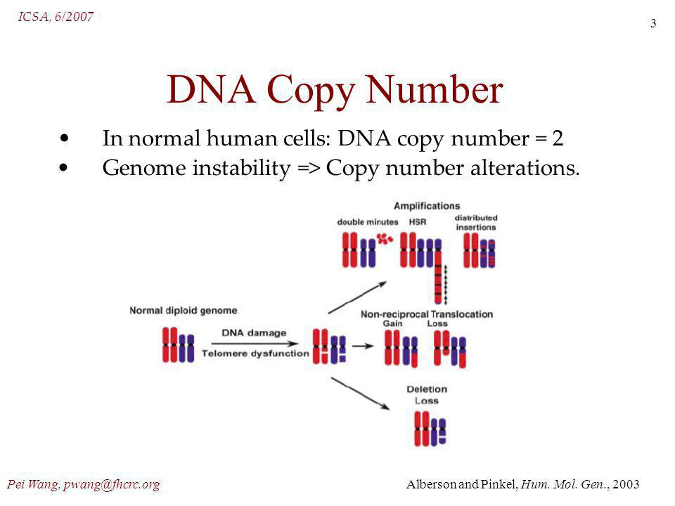 ICSA, 6/2007 Pei Wang, pwang@fhcrc.org 3 DNA Copy Number In normal human cells: DNA copy number = 2 Genome instability => Copy number alterations.