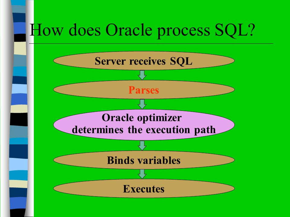 Server receives SQL Parses Oracle optimizer determines the execution path Binds variables Executes How does Oracle process SQL