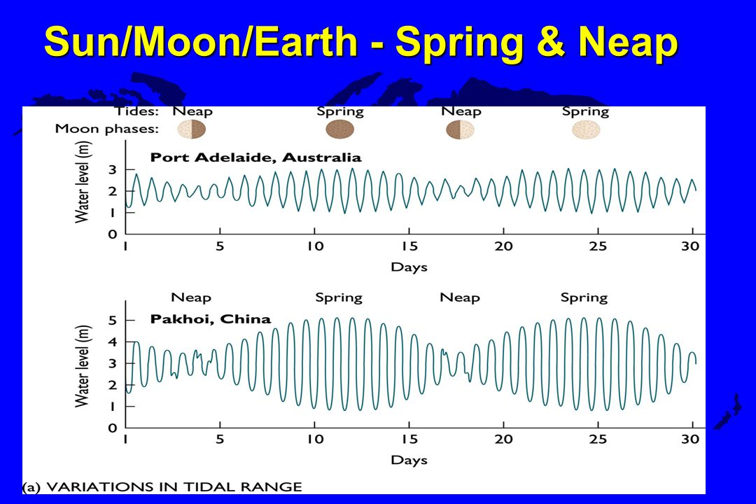 Sun/Moon/Earth - Spring & Neap