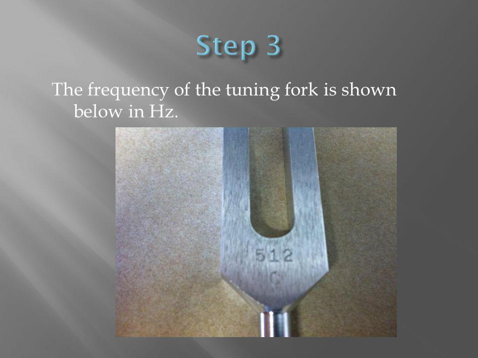 The frequency of the tuning fork is shown below in Hz.