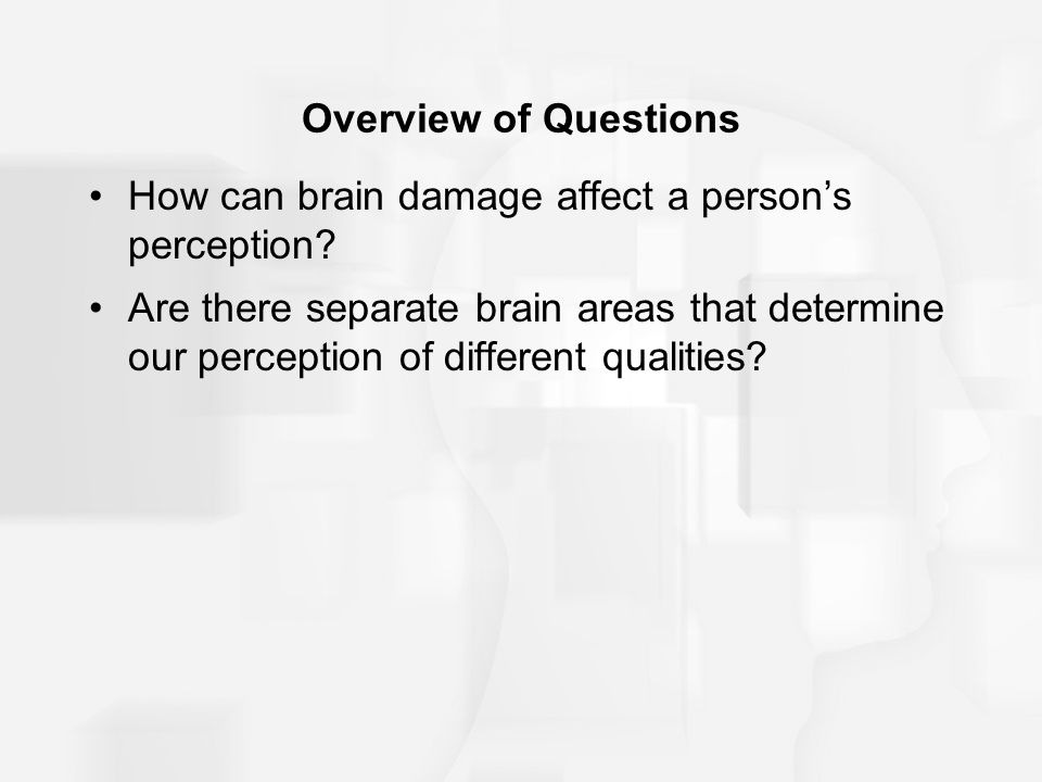 Overview of Questions How can brain damage affect a persons perception? Are there separate brain areas that determine our perception of different qual