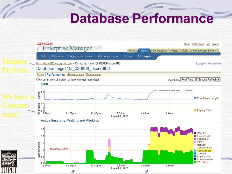 Dale Roberts 81 Database Performance Monitor Database We have a CPU issue!