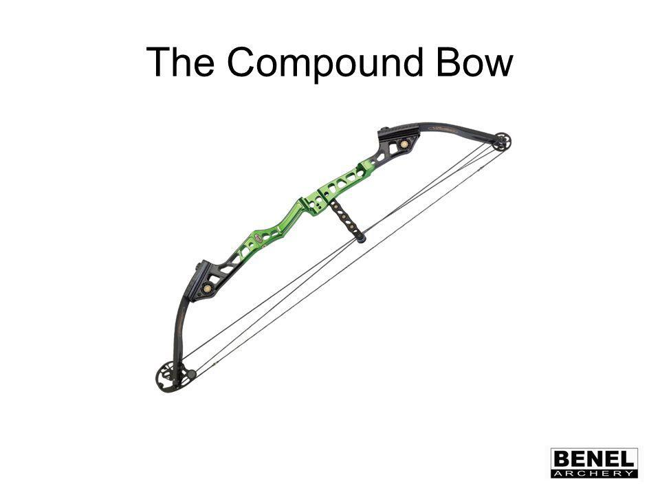 Topics to be Discussed Riser Type Limb Style Cam Design Sights Scopes Arrow Rest Trigger Stabilizers Arrows Draw Length Draw Weight Attachments