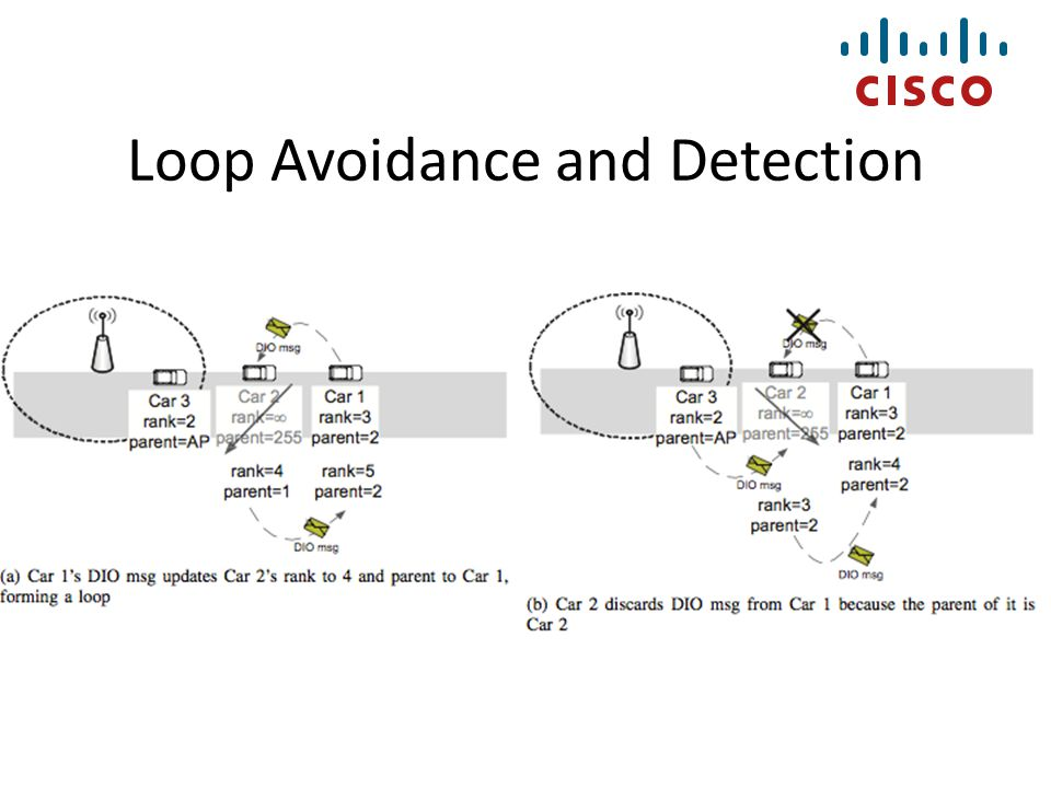 Loop Avoidance and Detection