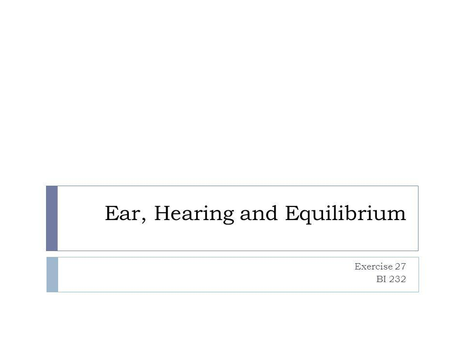 Ear, Hearing and Equilibrium Exercise 27 BI 232