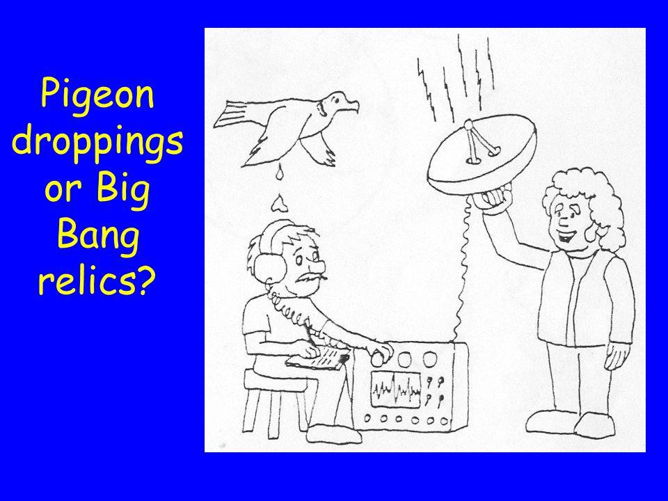 Pigeon droppings or Big Bang relics