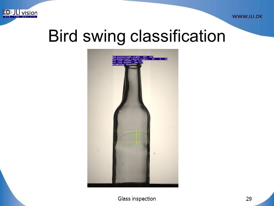 Glass inspection 29 Bird swing classification