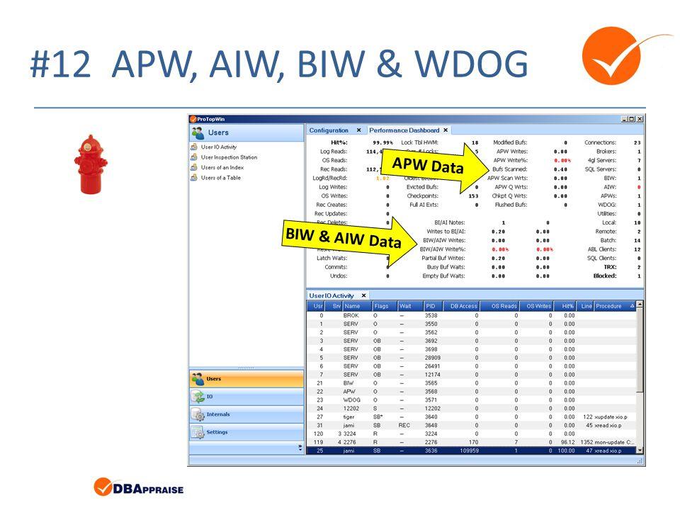 #12 APW, AIW, BIW & WDOG APW Data BIW & AIW Data