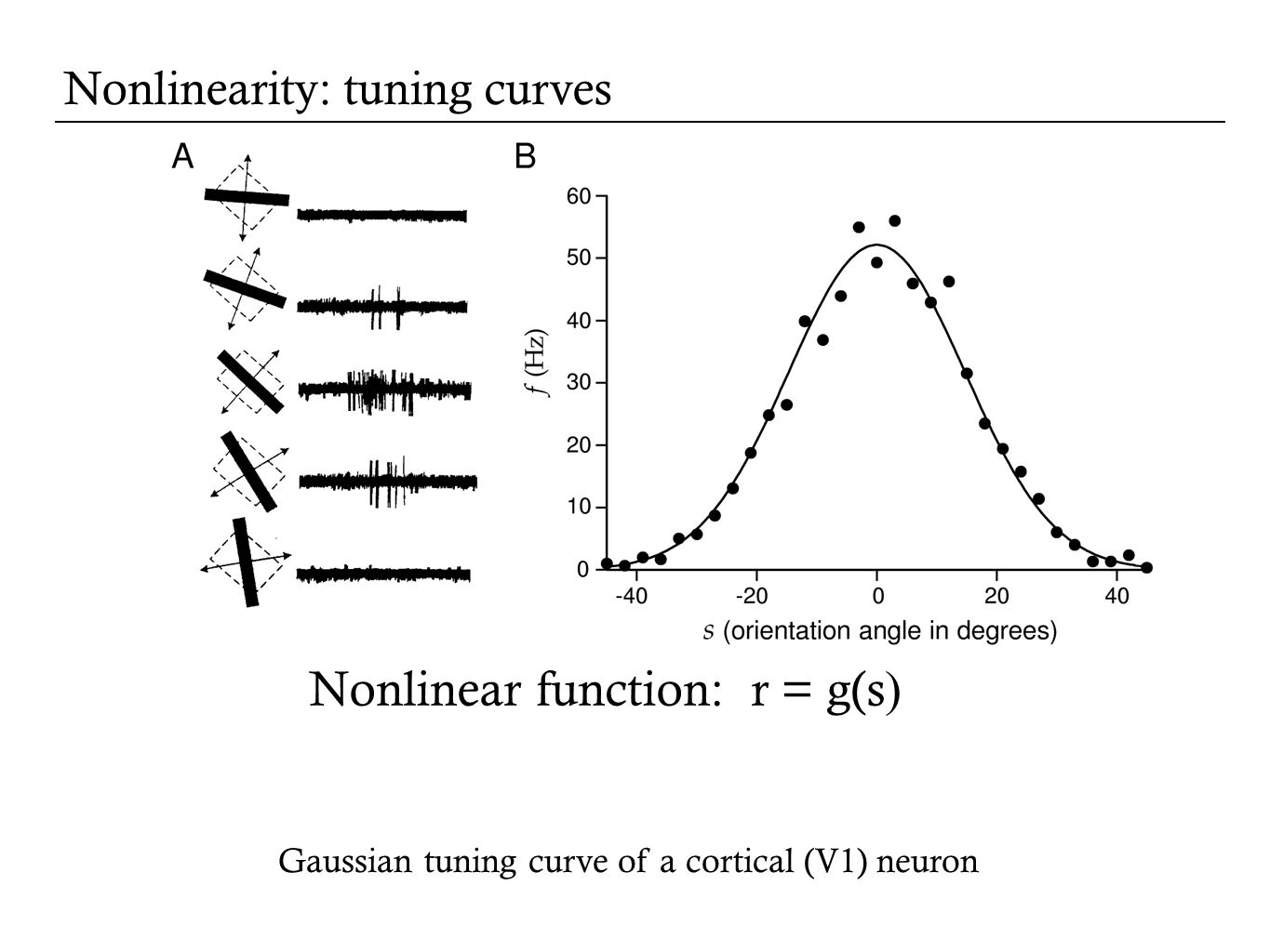 Nonlinearity: tuning curves Gaussian tuning curve of a cortical (V1) neuron Nonlinear function: r = g(s