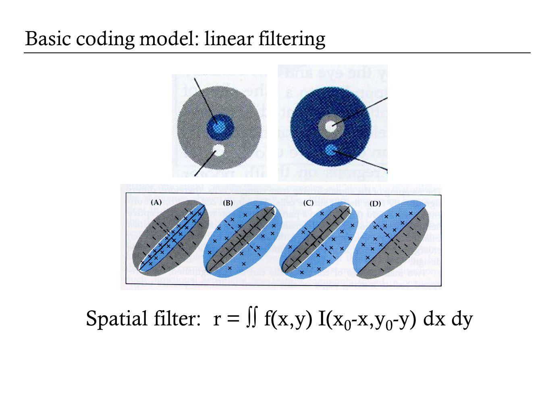 Basic coding model: linear filtering Spatial filter: r = f(x,y) I(x 0 -x,y 0 -y) dx dy