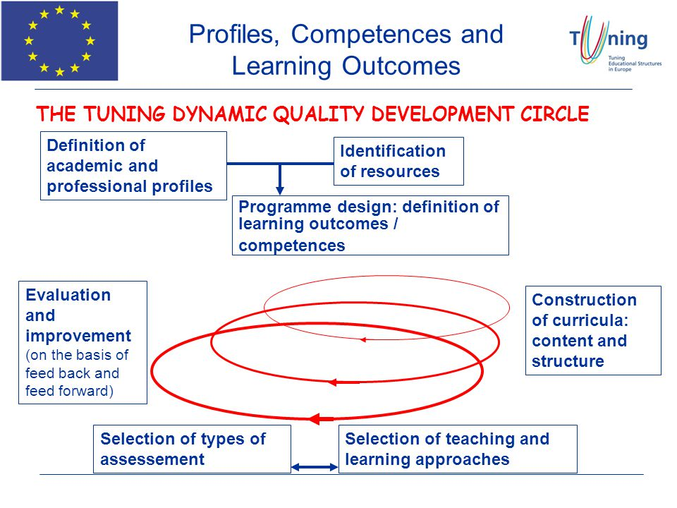 THE TUNING DYNAMIC QUALITY DEVELOPMENT CIRCLE Definition of academic and professional profiles Identification of resources Programme design: definitio